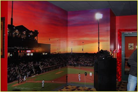 Baseball Wall Murals baseball wall mural home design ideas