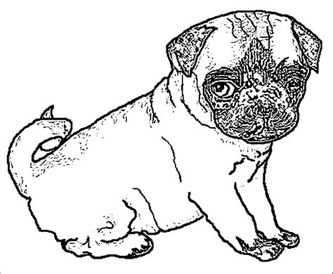 coloring pages for girls pugs az coloring pages