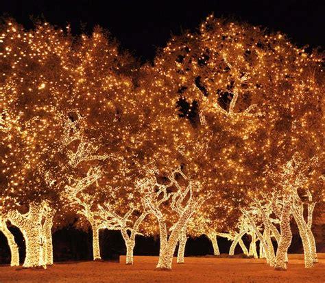 johnson city texas christmas lights texas pinterest