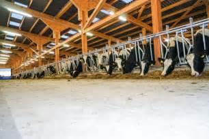 beleuchtung landwirtschaft energieeffiziente led beleuchtung f 252 r die landwirtschaft