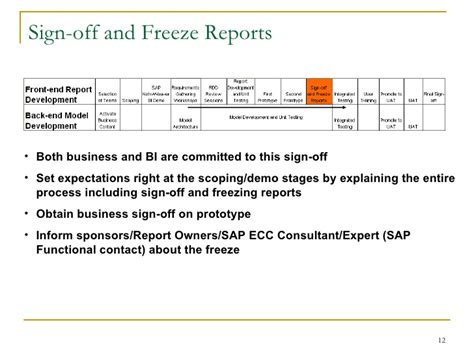 business objects report requirements gathering template sap bi requirements gathering process