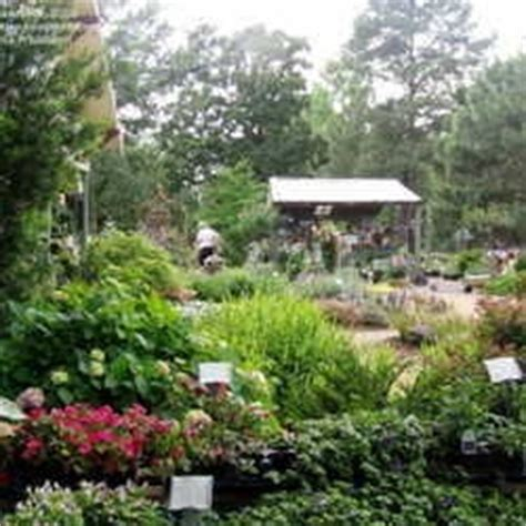 Victoria Gardens Gift Card - 17 best images about victoria tx on pinterest parks custom home builders and hall