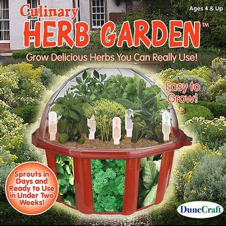 dunecraft culinary herb garden kit walmartcom