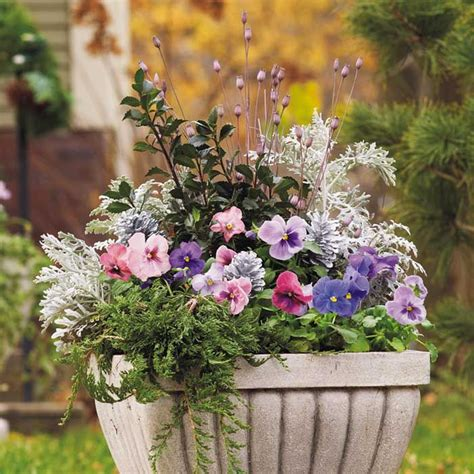 Winter Flower Gardens 25 Best Ideas About Winter Container Gardening On Planters Shade Fall Potted