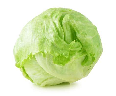 imagenes lechugas verdes la lechuga toda las propiedades beneficios y usos