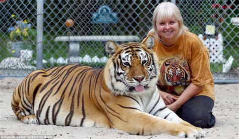 florida woman keeps two big cats in her garden and treats them like normal pets daily mail online