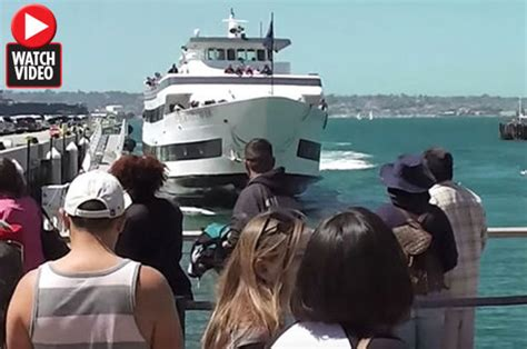 boat crash in san diego whale watching boat crashes into harbour in san diego