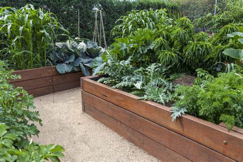 types of raised garden beds 32 raised wooden garden bed designs exles