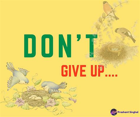 Don T Give Up don t give up prashant singhal