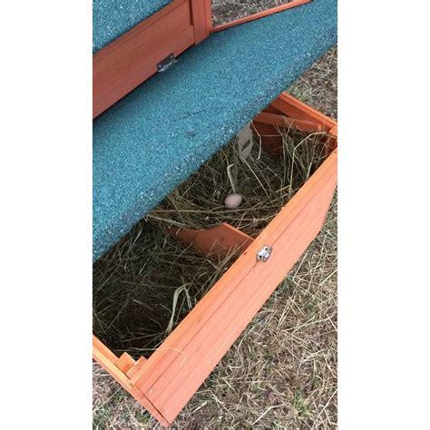 galline in giardino pollaio in legno da giardino per 2 4 galline ovaiole