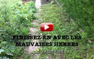 formation un jardin sans mauvaises herbes jardinier pro