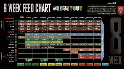 house and garden nutrients house and garden nutrients house garden 8 week feed chart autoflower portal