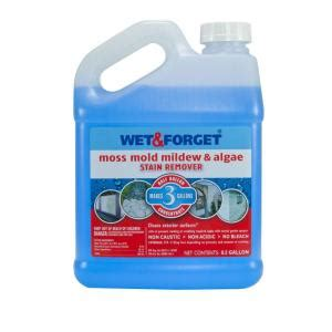 Bathroom Mold Removal Home Depot Forget 0 5 Gal Moss Mold Mildew And Algae Stain