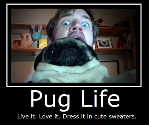 the pug song lyrics pewdiepie song quotes