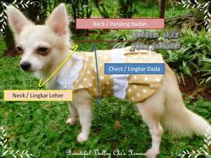 Baju Dress Hewan Kesayangan Pet Cat Lucu baju anjing ukuran kecil a journey of my