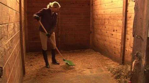 horses care amp grooming how to clean horse stalls youtube