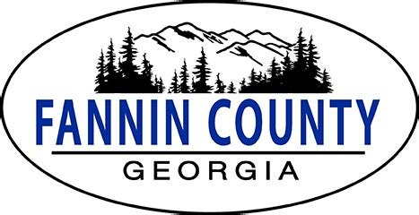 Fannin County Court Records About Fannin County Government