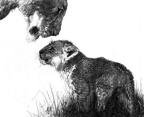 los mejores dibujos de animales los mejores dibujos a lapiz taringa