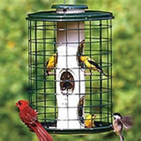 squirrel proof bird feeders wild bird feeder keep