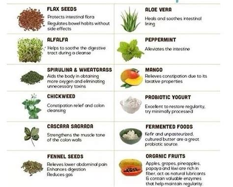 Foods To Eat During Detox by 12 Colon Cleansing Foods To Eat During In