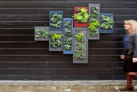 personal vertical garden 28 images savory surroundings