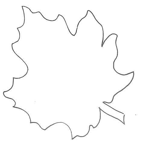 free leaf templates printable maple leaf template clipart best
