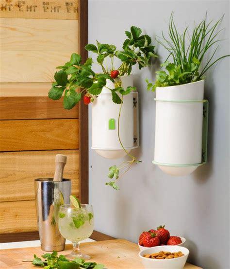 unique kitchen wall decor ideas