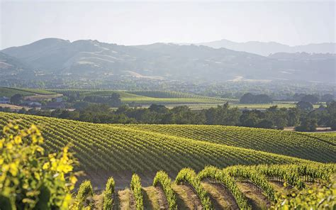 Photo Napa Valley by Napa Valley Lodge Yountville Hotel Official Hotel Website