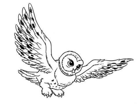 harry potter owl coloring pages snowy owl clip art clipart best clipart best