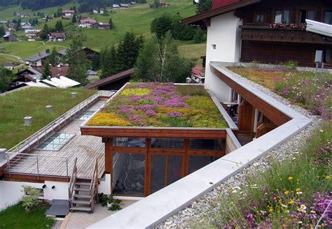 tetto giardino estensivo tetto verde estensivo costi terminali antivento per