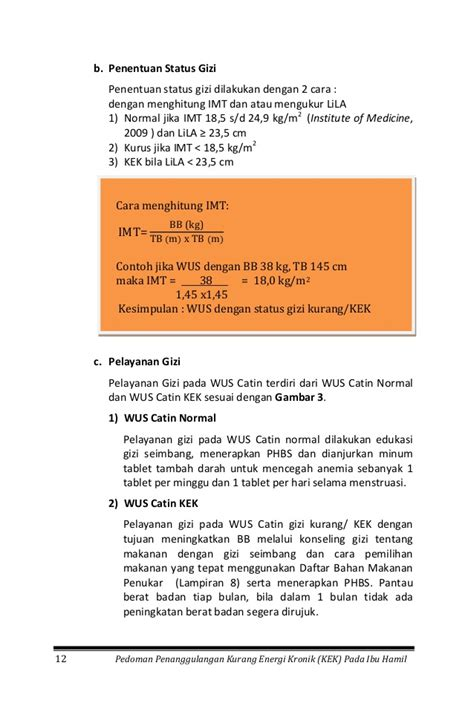 format buku observasi buku bumil kek 1 52