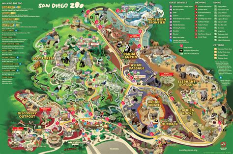 zoo map san diego zoo map pdf images