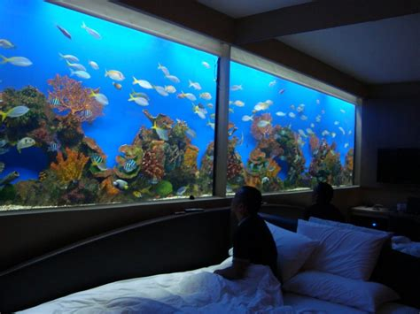 Hotels With Aquariums In The Room by Large In Wall Aquarium Gallery