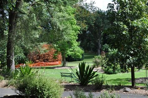 Geelong Botanic Garden More Teeth Picture Of Geelong Tripadvisor