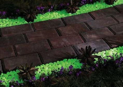 glow in the paint malta 1000 ideas about backyard designs on