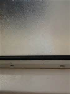 Shower Caulk Mold by 301 Moved Permanently