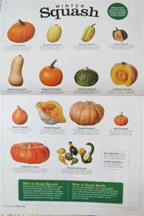 squashes squash varieties and winter on pinterest