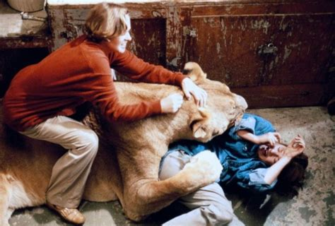 film the lion roars getting animals drunk for fun and profit shadowplay
