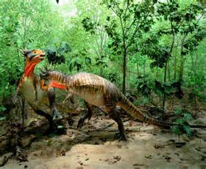 Dino Images Dinosaurs Images Animal