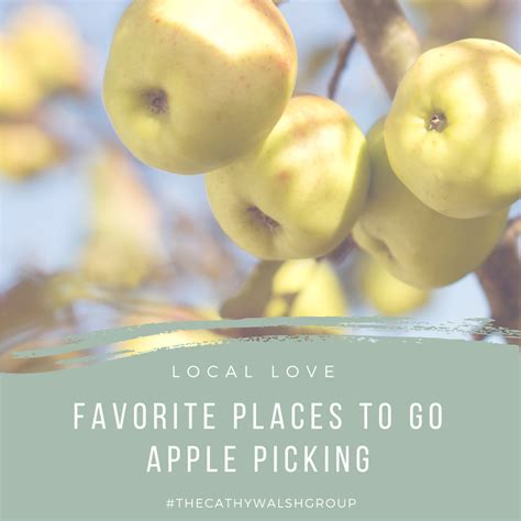 our favorite places to go apple picking in chicagoland
