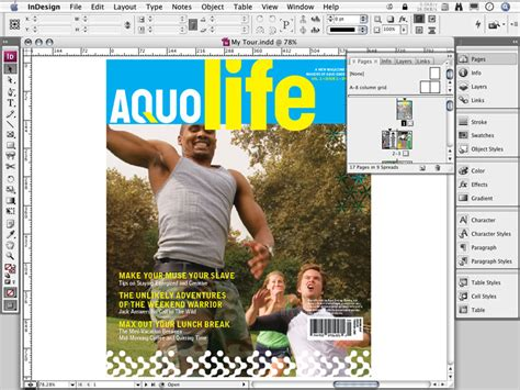 layout software in design amazon com adobe indesign cs3 mac old version software