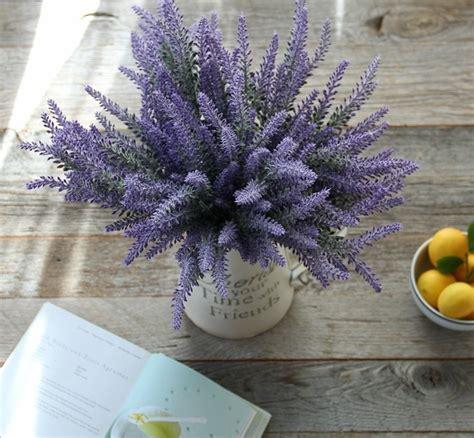 lavendel als zimmerpflanze 11 pflegeleichte zimmerpflanzen und heilkr 228 uter mit denen