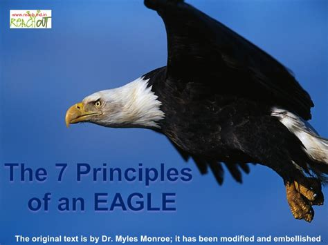 seven principles of true success rediscover the meaning of true success experience lasting satisfaction and happiness re live the lost of meditation and stress free living books the 7 principles of an eagle
