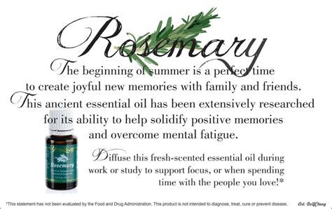 Doterra Rosemary Essential Original living rosemary essential 15ml