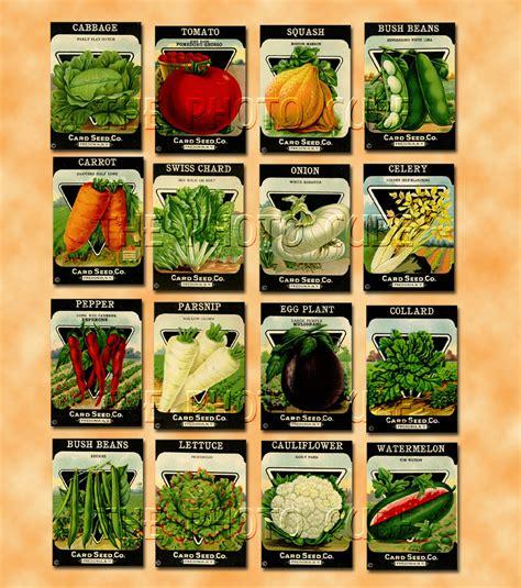 best vegetable seeds 7 best images of printable vegetable seed packets