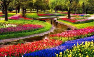 keukenhof a of tulips in amsterdam the netherlands