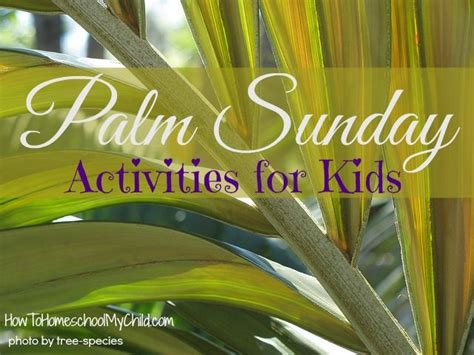palm sunday craft for palm sunday activities for weekend links this