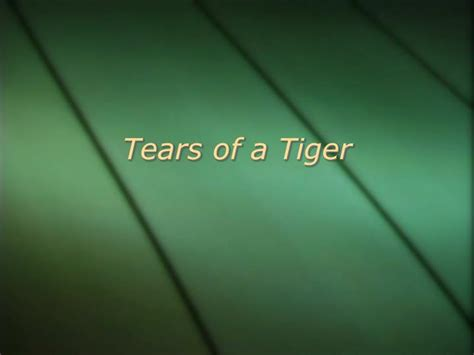 tears of a tiger book report ppt tears of a tiger powerpoint presentation id 6788173