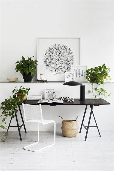 Small Plants For The Desk 10 Tips And Creative Ideas For Your Office Desk Home