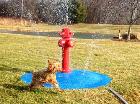 puppy pad spray water park portable splash pad my splash pad